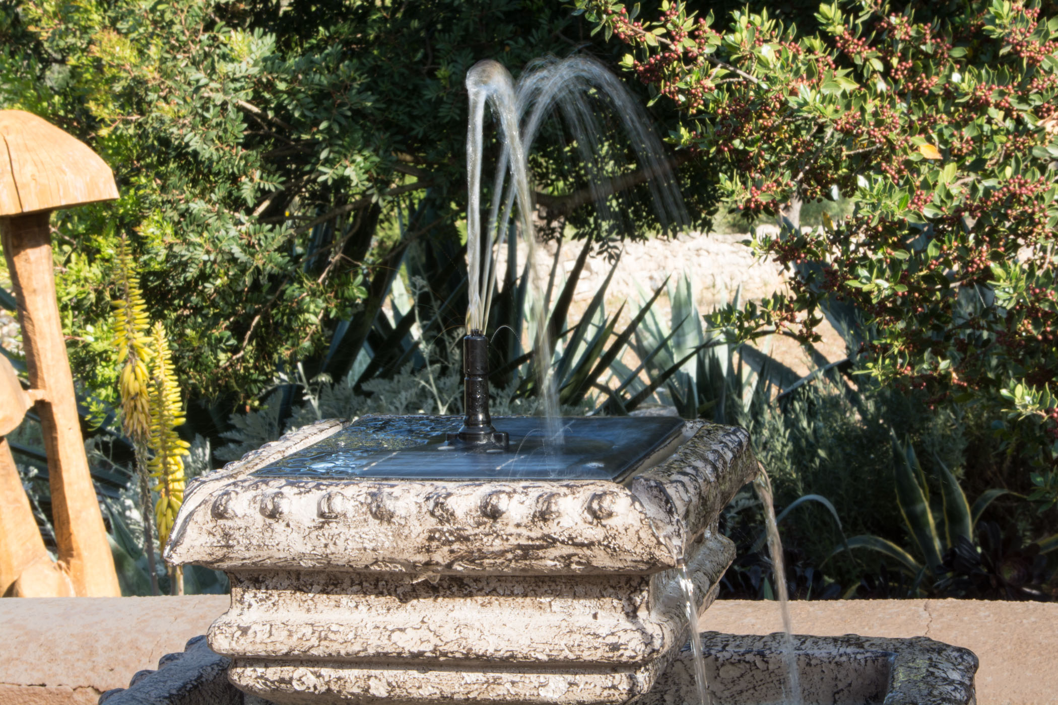 maintenance and direct garden in with water features sale jessecoombs for tips your