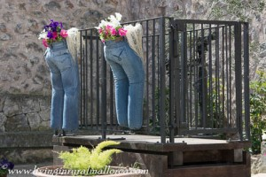 Jeans to display flowers
