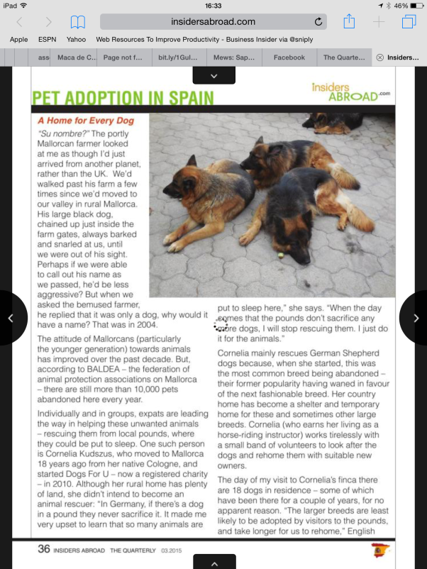 Article about dog rescuers on Mallorca