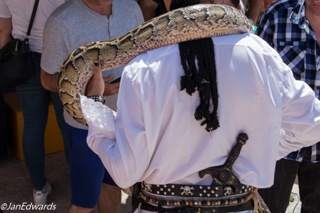 Man with snake