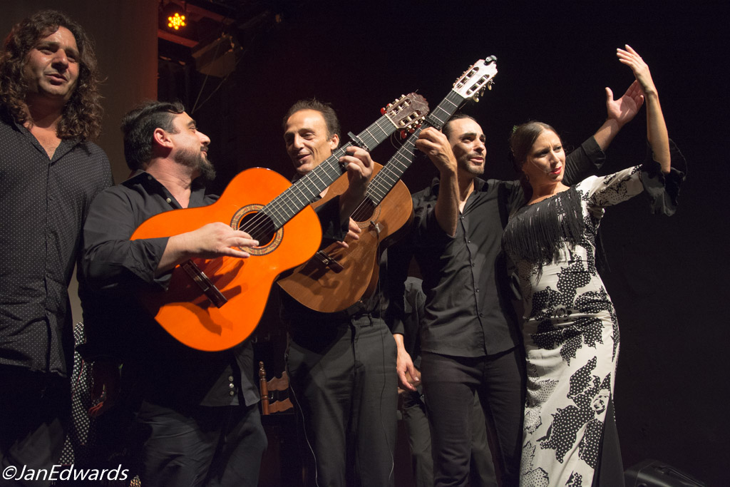 Flamenco in Palma